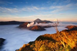Bromo Ijen Tour Package 4 Day 3 Night